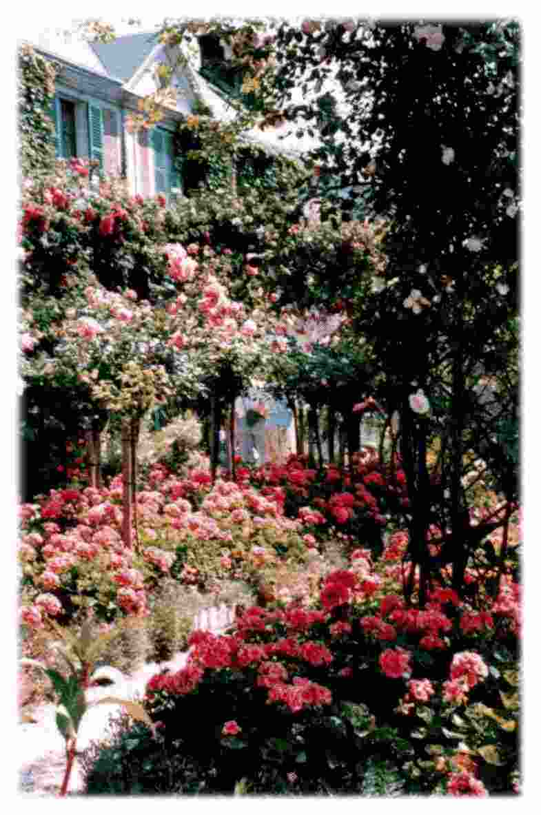 Giverny. Garden with Monet's house.
